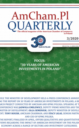 Focus - 30 Years Of American Investment